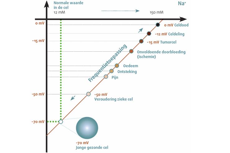 Healy frequentietherapie celwaarden spanningsmembraam